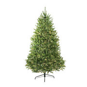 Northlight 14and039 Pre-lit Northern Pine Full Artificial Christmas Tree Clear Lights