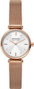 Skagen Amberline Two-hand Watch With Leather Or Steel Mesh Band