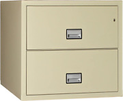 Phoenix Lateral 31 Inch 2-drawer Fireproof File Cabinet With Lock Water Seal P