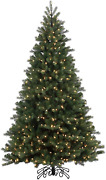 Vickerman 10' Noble Spruce Instant Shape Artificial Christmas Tree, Led Warm Whi