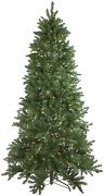 Northlight 9and039 Pre-lit Instant Connect Neola Fraser Fir Artificial Christmas Tree