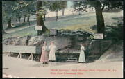 Chester Wv Rock Springs Park Women At Water Trough Vintage Postcard Old W Va Pc