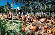 Pumpkin Patch Photorealist Painting 1996 Acrylic On Canvas 30x47in Charlotte Nc