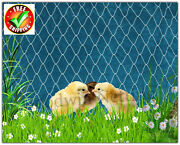 Poultry Netting 16and039 Baby Chickens Ducks Quail Aviary Net Plant Protective Nets