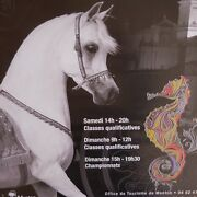 3 Posters Cheval Arabe Mandeacutediterranandeacutee Pays Arabes Menton French Riviera 2016 N2257