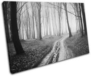 Forest Road Landscapes Single Canvas Wall Art Picture Print