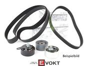 Audi Genuine A2 1.4l Timing Belt Repair Kit With Tensioner Pulley 038198119a