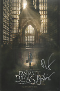 Fantastic Beasts And Where To Find Them Cast X3 Signed Jon Voight 11x17 Photo