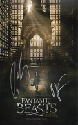 Fantastic Beasts And Where To Find Them Cast X3 Signed Colin Farrell 11x17 Photo