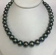 Tahitian Black South Sea Pearls. 11x12.6mgreat Luster. 14k Gold Ball Clasp. 17