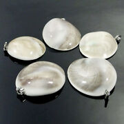 Natural Conch Fossil Trumpet Shell Gemstone Beads Charms Pendant
