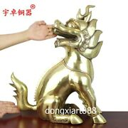 55 Cm Chinese Pure Brass Foo Dog Lion Dragon Kylin Fengshui Animal Wealth Statue