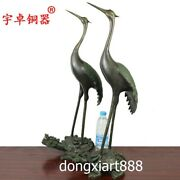 69 Cm Pure Bronze Tortoise Trtle Red-crowned Crane Chinese Fengshui Statue Pair