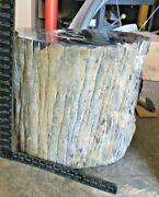 Side Table/base Petrified Wood Fossil Indeterminate Age Color Onyx