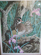 Cris Forest Wood Ducks Lithograph Limited Edition 224/300 W/wooden Frame
