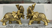 Collect China Brass Copper Attract Wealth Good Luck Aniaml Elephant Statue Pair