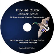 Learn Duck Taxidermy Training On Dvd For Beginners - New