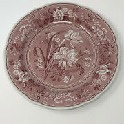 The Spode Archive Collection Georgian Series Botanical 1820 Copper Plate