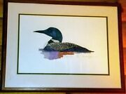 Lawrence Snyder Signed 246/350 Ltd Ed. Common Loon Hand Colored Etching Print