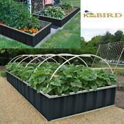 Outdoor Vegetable Planting Raised Garden Bed Planter Patio Grow Box Kit Herbs Us