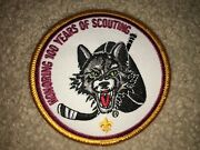 Boy Scout Bsa 2010 Chicago Wolves Illinois Ice Hockey Council Sport Patch