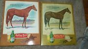 Vintage Rolling Rock Beer Sign Lot Race 🐎 Chateaugay , Lucky Debonair Rare