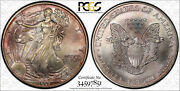 1997 Silver American Eagle Pcgs Ms66 Toning 34597851