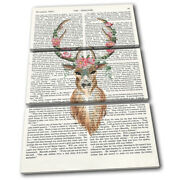 Stag Deer Flower Peony Book Animals Treble Canvas Wall Art Picture Print