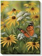 Wild Wings Painted Lady Butterfly 18 X 13 Wrapped Canvas By Rosemary Millette
