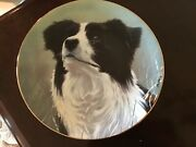 Danbury Mint Andldquoyours Faithfullyandrdquo Border Collie Numbered Limited Edition Plate