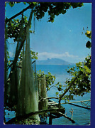 Vintage Postcard Nests Nets Outrigger Moorea French Polynesia