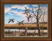 Pride Of The East - Black Ducks Framed Limited Edition Canvas By David A. Maass