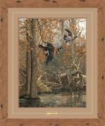 Lagrue Woodies - Wood Ducks Framed Limited Edition Print By Scot Storm