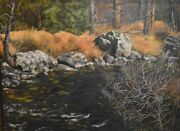 Virgia West Little Wood River In Idaho Original Oil Landscape Painting 16x20