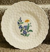 """Vintage Copeland Spode """"fernleigh"""" Daisy Canterbury Bells 8 Embossed Plate Mint"""