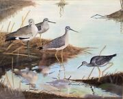 Original Shorebird Painting By J L Reardon Of Yellow Legs And Willet, Signed