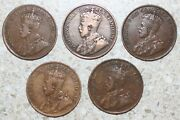 5 Coin Lot 1916-1919 Canada Large One Cent Coins Yg Bronze Canadian Pennies 1c