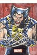 2010 Marvel Heroes And Villains Sketch Card Goulart Wolverine