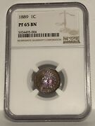 Ngc Pf-65 Bn 1889 Indian Head Cent, Beautifully Toned, Nearly Red-brown Proof.