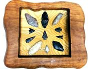 Collection Of Archaic Native American Arrowheads Framed On Exotic Wood
