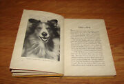 Only A Dog And Other Stories By Charles L Paddock Pacific Press, 1939 Hc