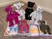 1999 2000 Y2k Millenium The End The Beginning Ty Beanie Baby Bears 6 Lot