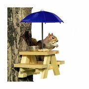 Squirrel Feeder Picnic Table With Blue Umbrella And Corn Cob Holder And Small...
