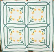Vintage Daffodil Applique Antique Quilt Garden Maze Frame And Nice Quilting