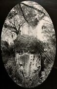 Bryan Whitney 20th-21st C. American Large Format Photograph Wooded Landscape