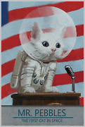 New Mr Pebbles Fallout Game Poster Print Art Canvas Gamer Astronaut Cat