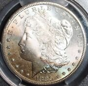 1880 S Morgan Silver Dollar Cac Pcgs Ms66 Awesome Rainbow Toning Look