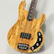 Music Man / Limited Edition Spolted Maple Stingray Electric Bass Guitar