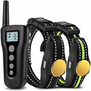 Patpet P320b Dog Training Collars For 2 Dogs With 1 Remote Rechargeable Waterpro