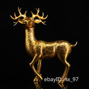 16 China Collection Old Pure Copper Seiko Casting Gilt Deer